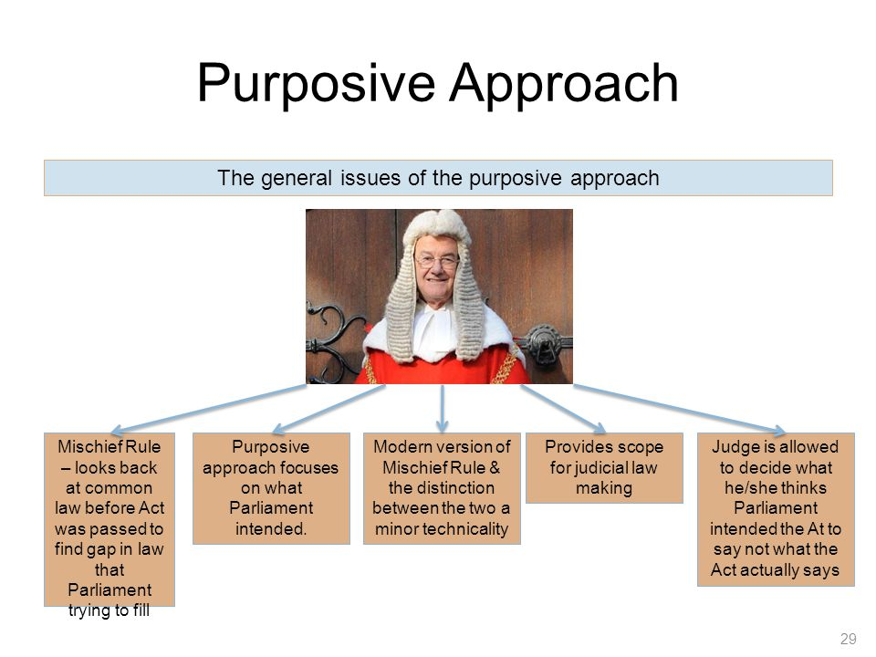 Purposive Approach The general issues of the purposive approach