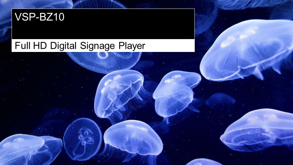 VSP-BZ10 Full HD Digital Signage Player