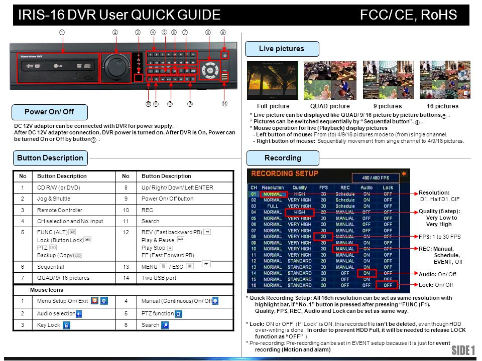 IRIS-16 DVR User QUICK GUIDE FCC/ CE, RoHS