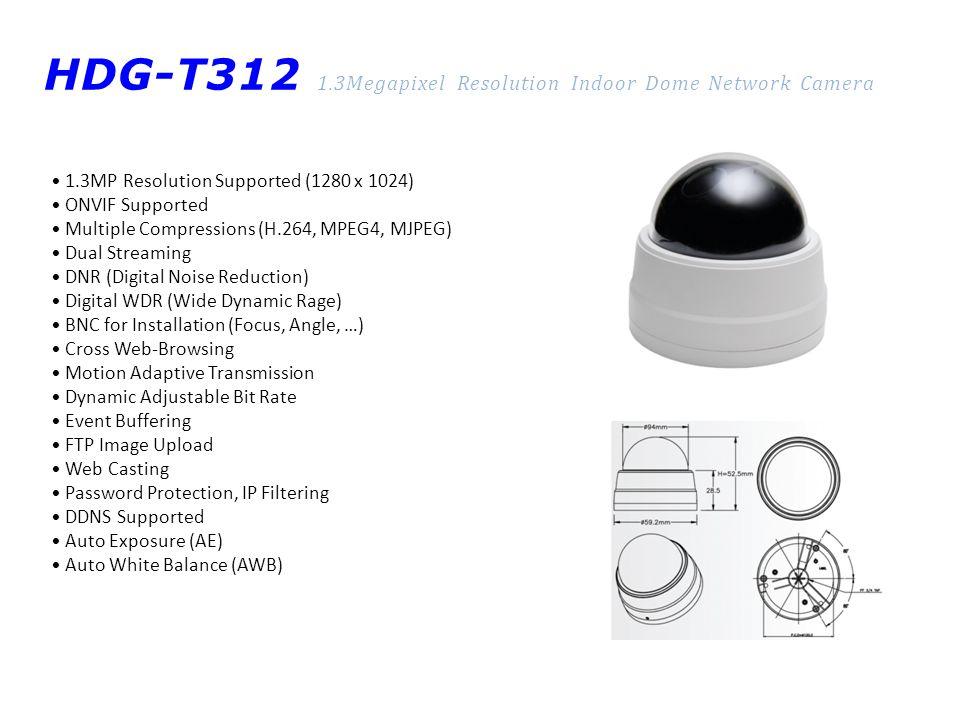 HDG-T312 1.3Megapixel Resolution Indoor Dome Network Camera