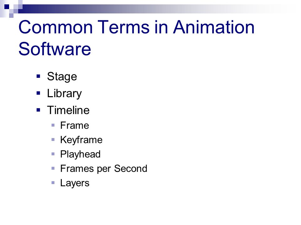 Common Terms in Animation Software