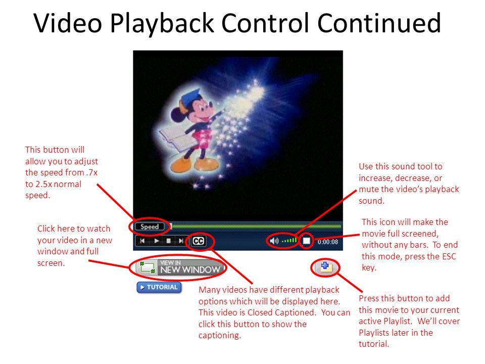 Video Playback Control Continued