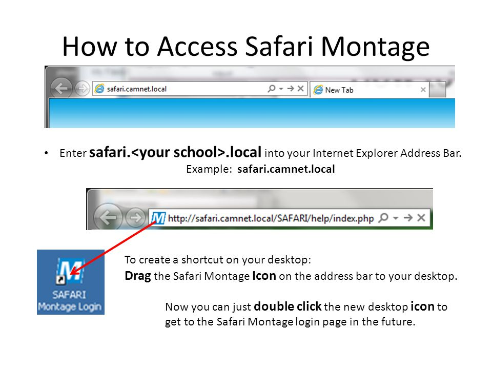 How to Access Safari Montage