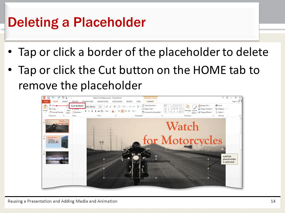 Deleting a Placeholder