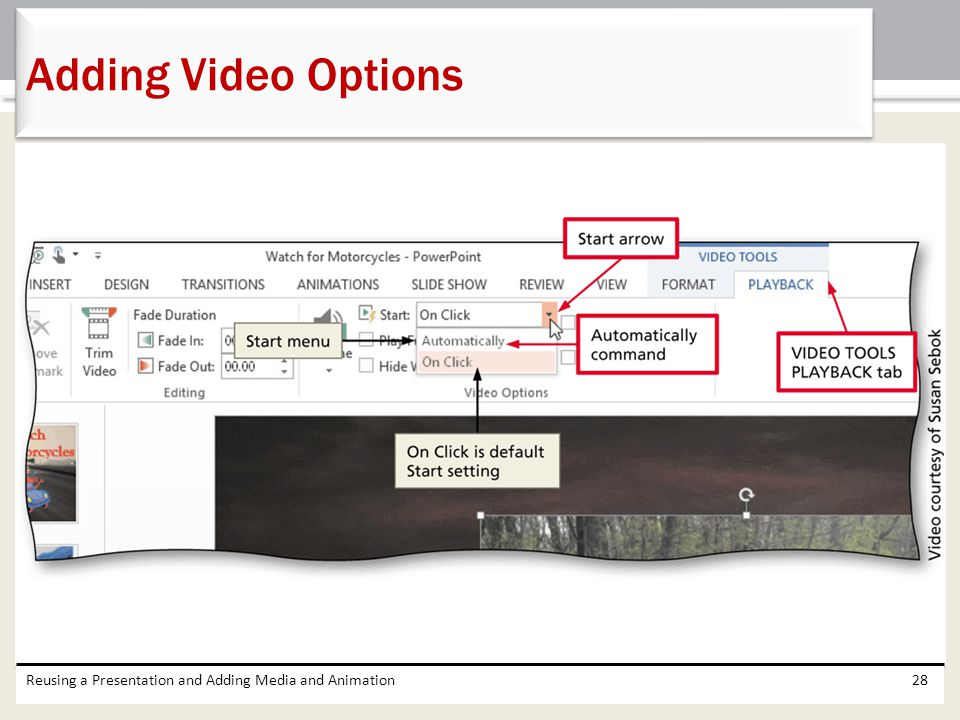 Adding Video Options Reusing a Presentation and Adding Media and Animation