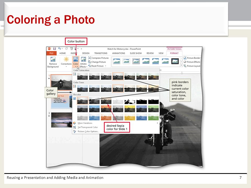 Coloring a Photo Reusing a Presentation and Adding Media and Animation