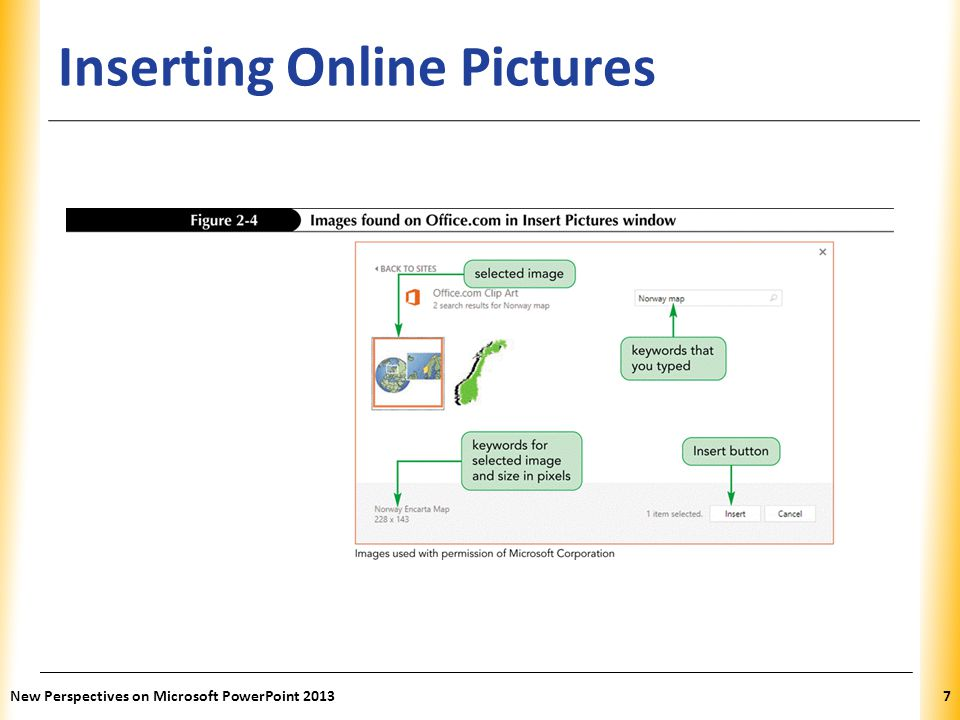 Inserting Online Pictures