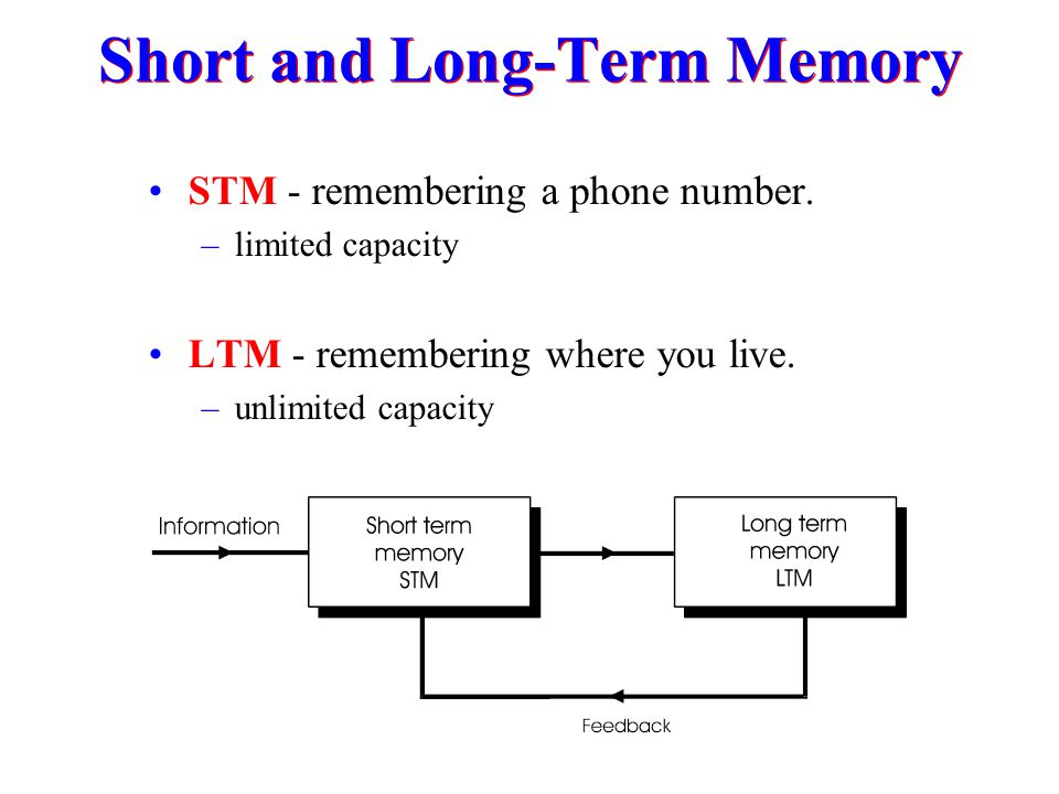 Short and Long-Term Memory