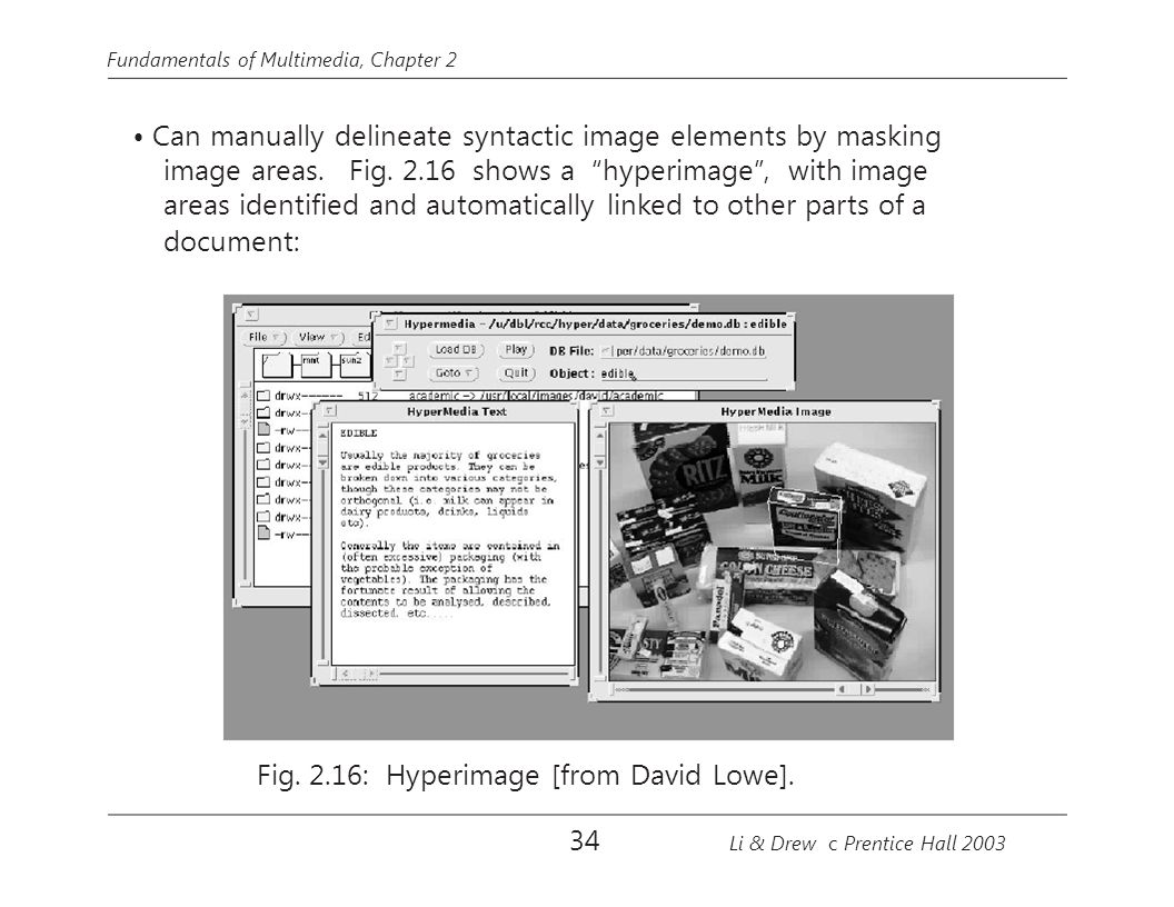 image areas. Fig. 2.16 shows a hyperimage , with image