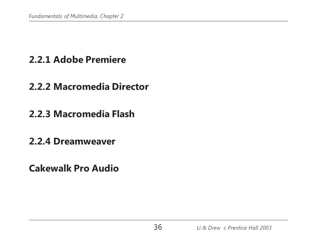 2.2.1 Adobe Premiere 2.2.2 Macromedia Director 2.2.3 Macromedia Flash