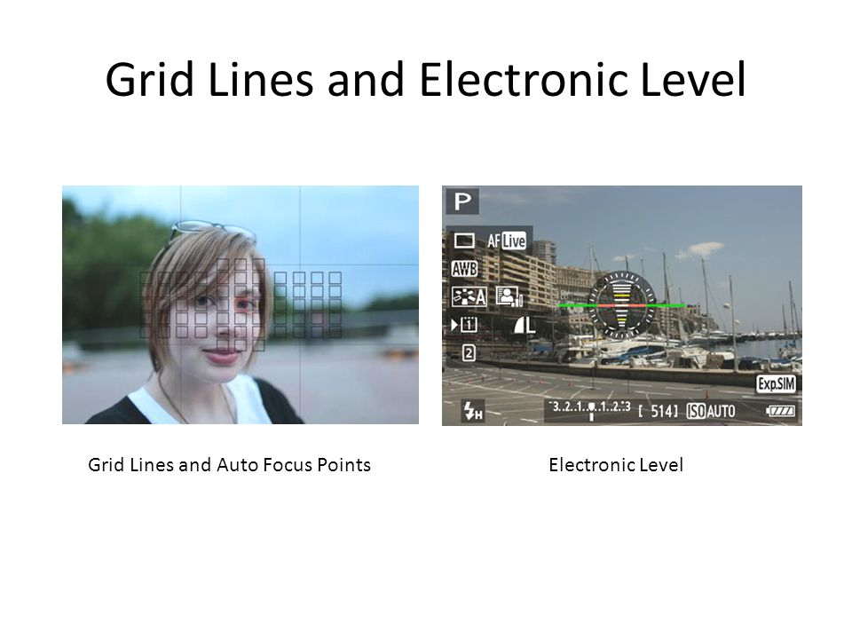 Grid Lines and Electronic Level