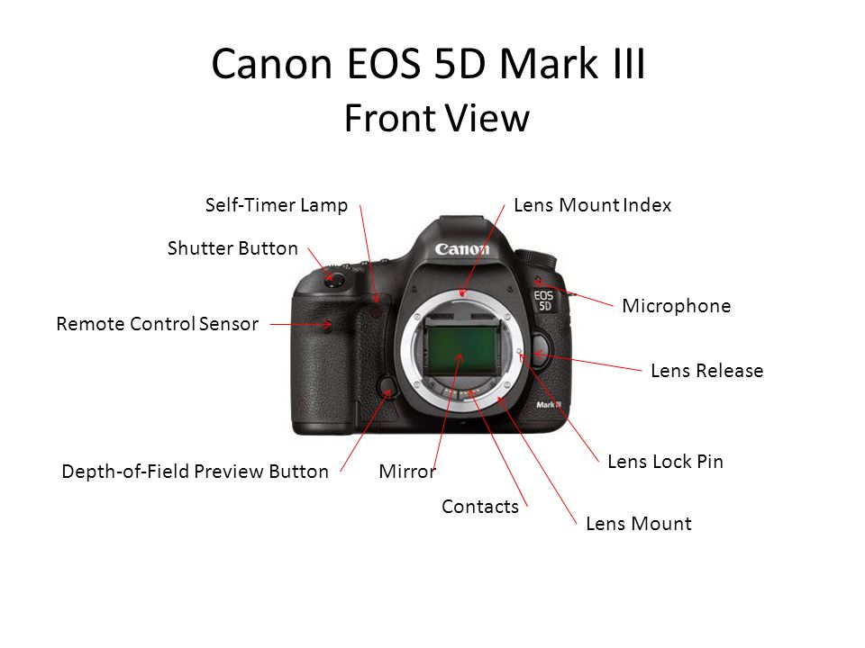 Canon EOS 5D Mark III Front View Self-Timer Lamp Lens Mount Index
