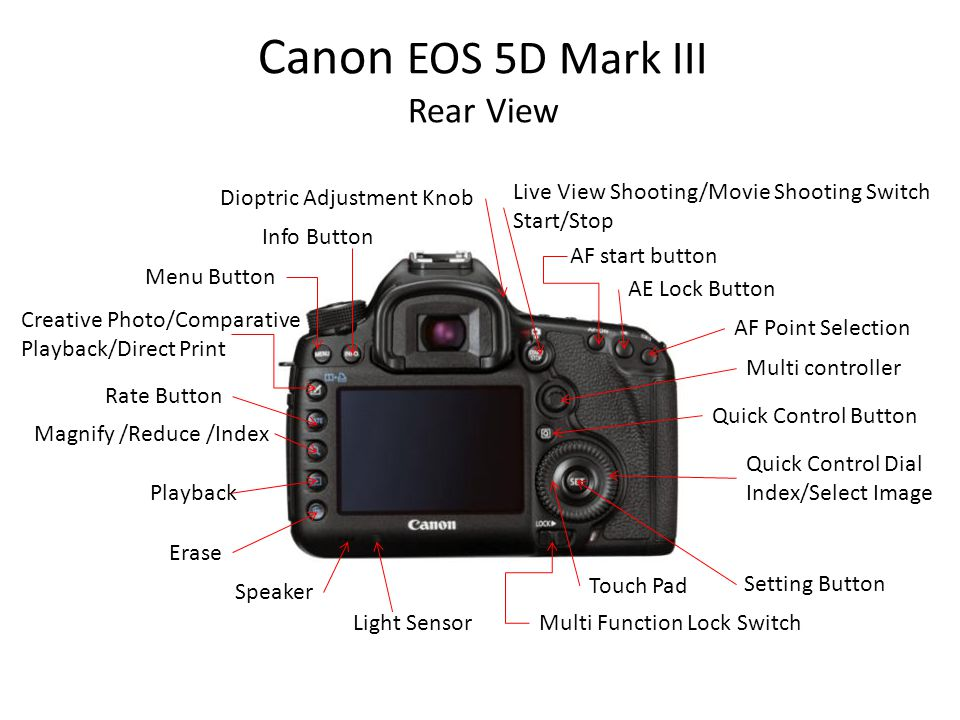 Canon EOS 5D Mark III Rear View