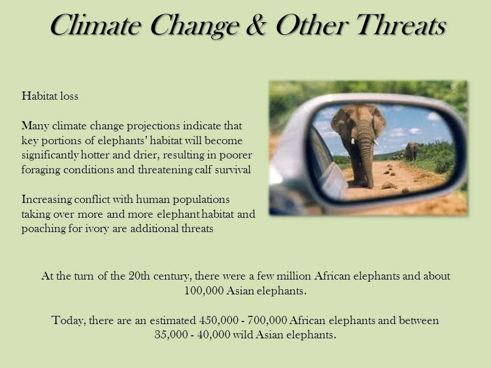 Climate Change & Other Threats