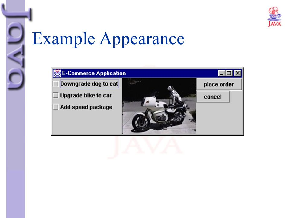 Example Appearance