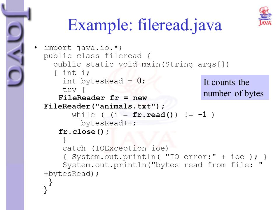 Example: fileread.java