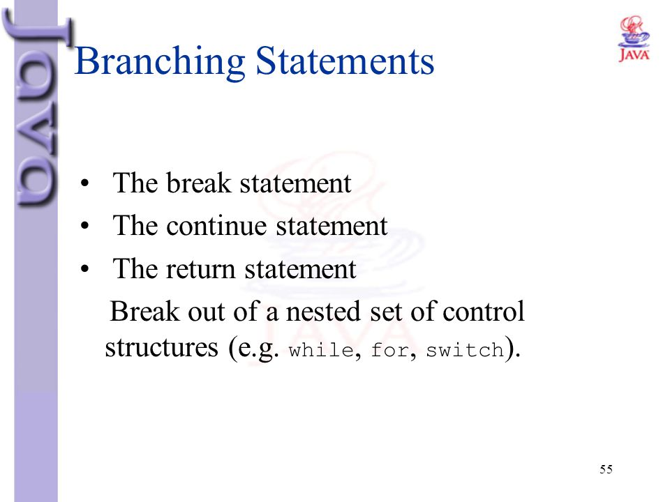 Branching Statements The break statement The continue statement