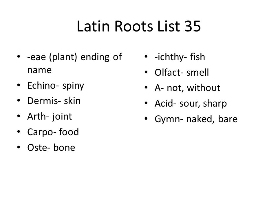 Latin Roots List 35 -eae (plant) ending of name Echino- spiny