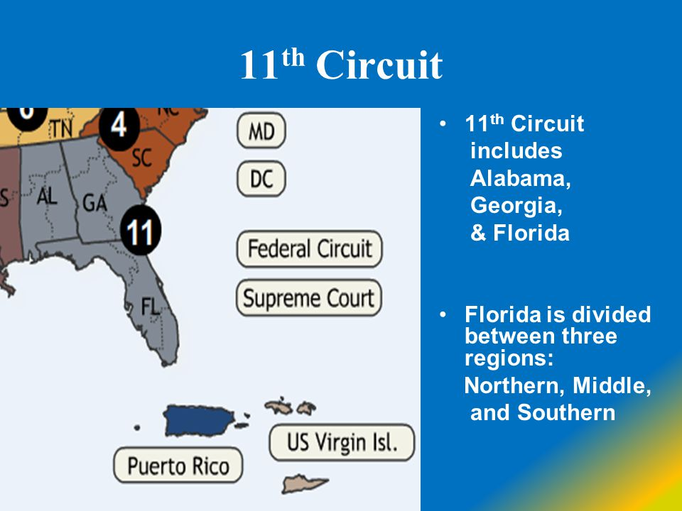 11th Circuit 11th Circuit includes Alabama, Georgia, & Florida