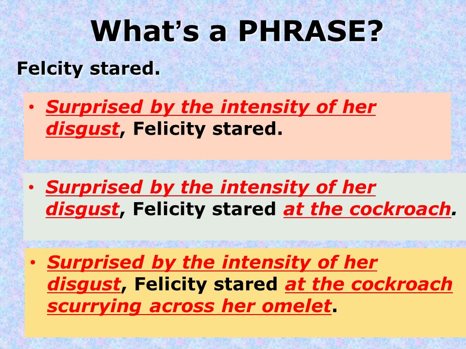 What's a PHRASE Felcity stared.