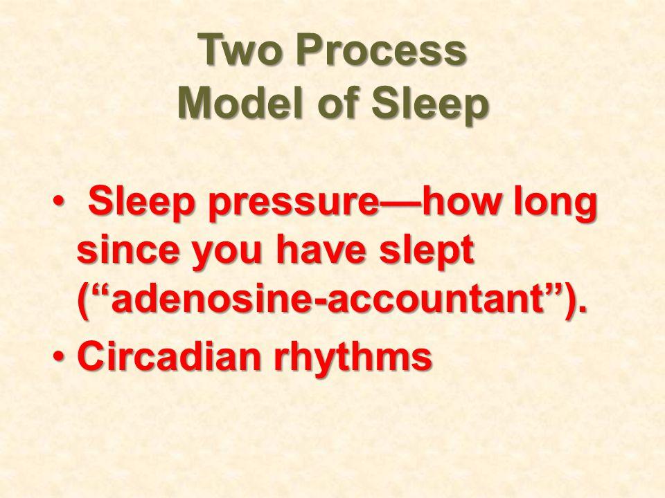 Two Process Model of Sleep