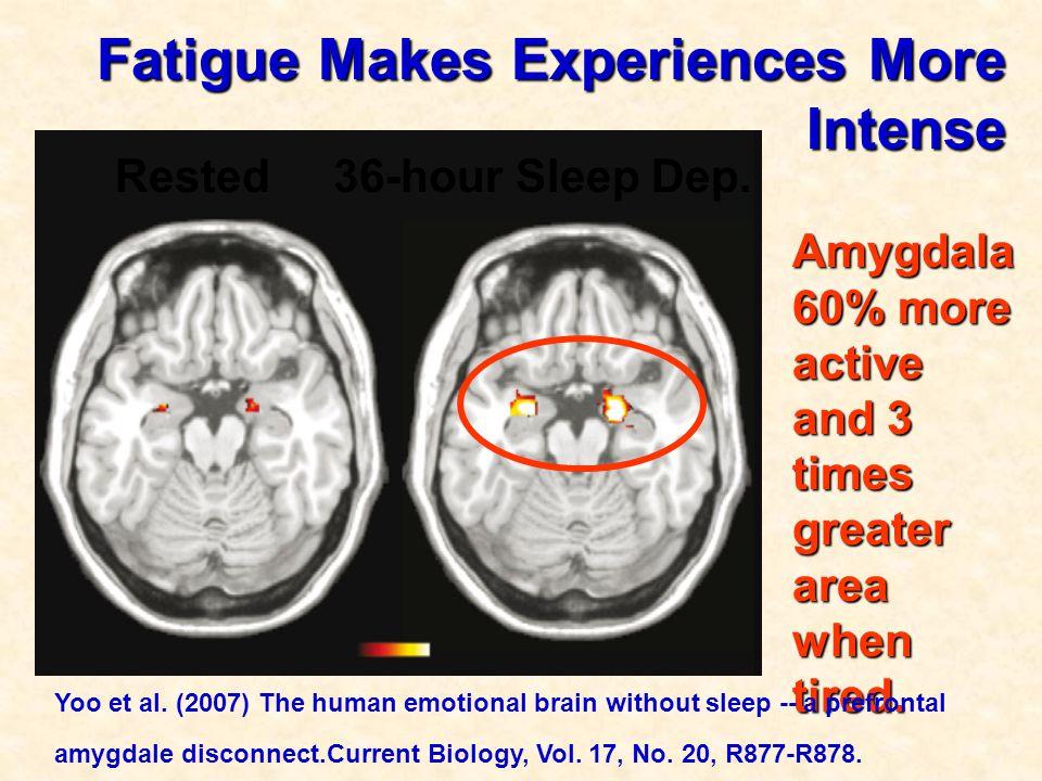 Fatigue Makes Experiences More Intense