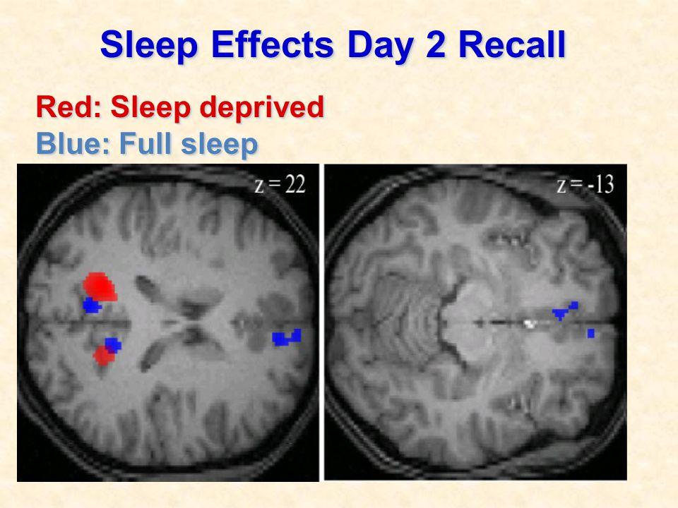 Sleep Effects Day 2 Recall