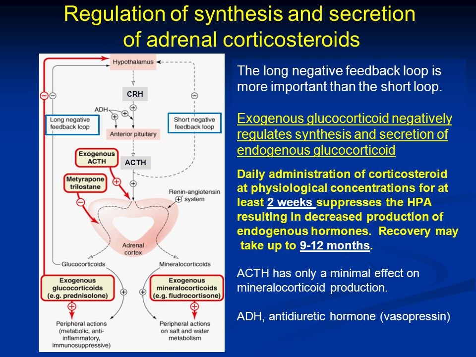 Regulation of synthesis and secretion of adrenal corticosteroids