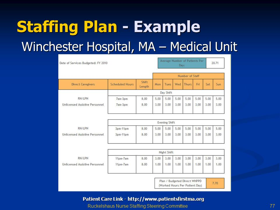 Staffing Plan - Example