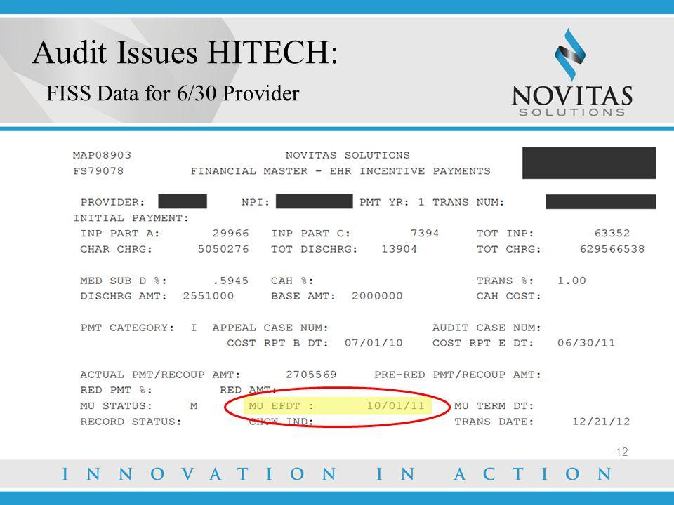 Audit Issues HITECH: FISS Data for 6/30 Provider