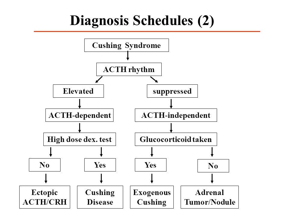 Diagnosis Schedules (2)
