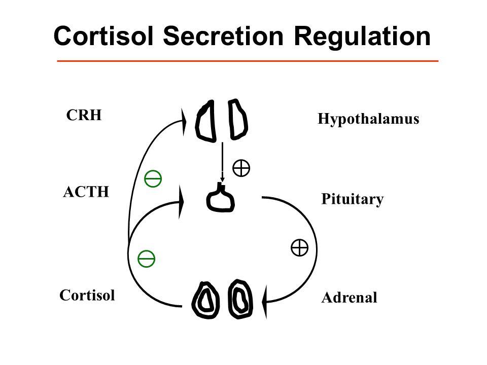 Cortisol Secretion Regulation