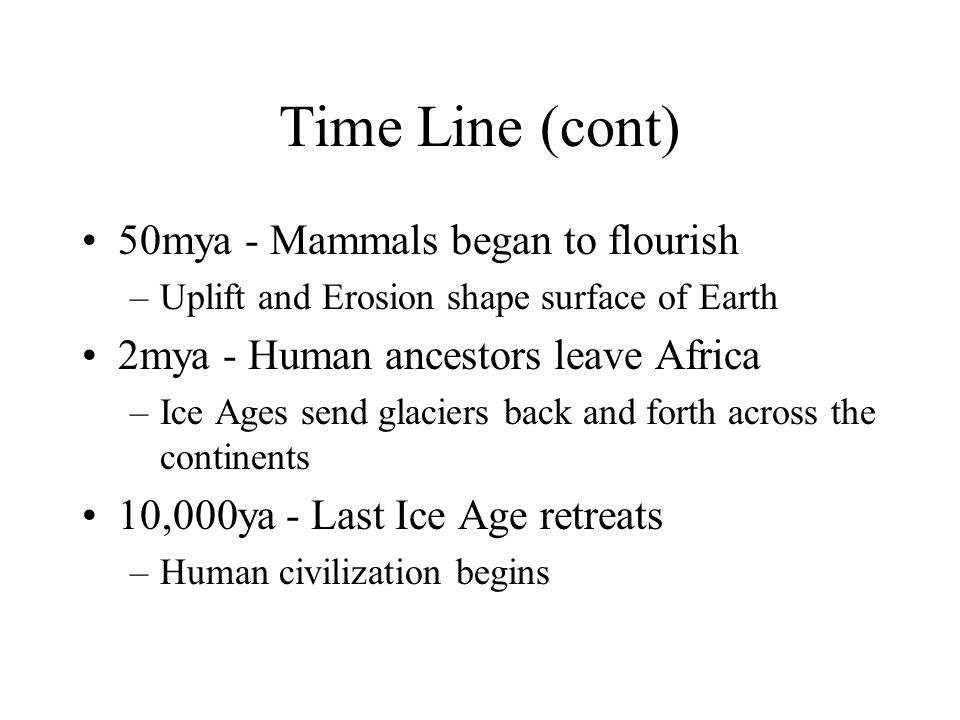Time Line (cont) 50mya - Mammals began to flourish