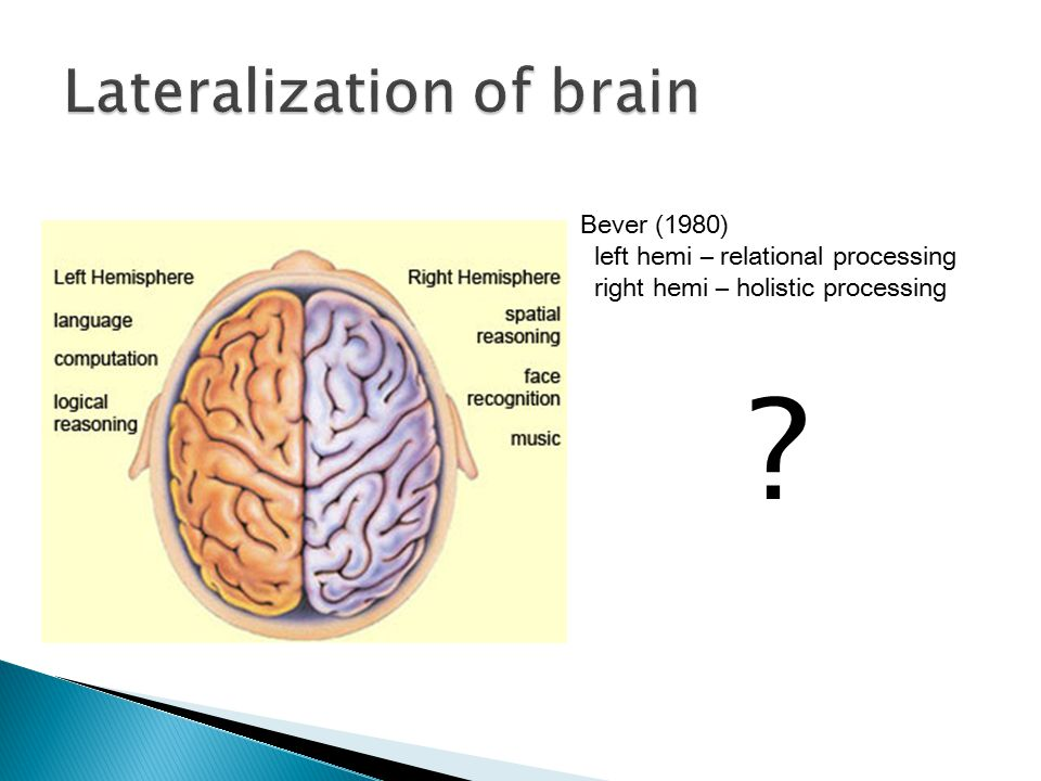 Lateralization of brain