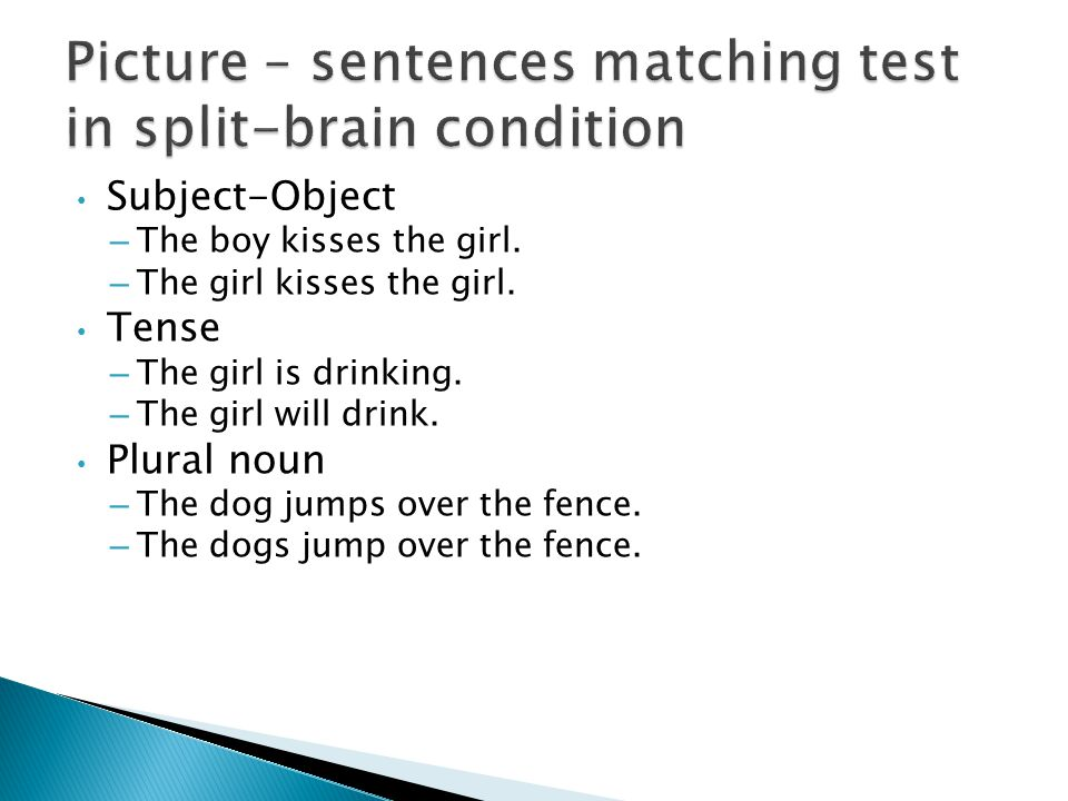 Picture – sentences matching test in split-brain condition