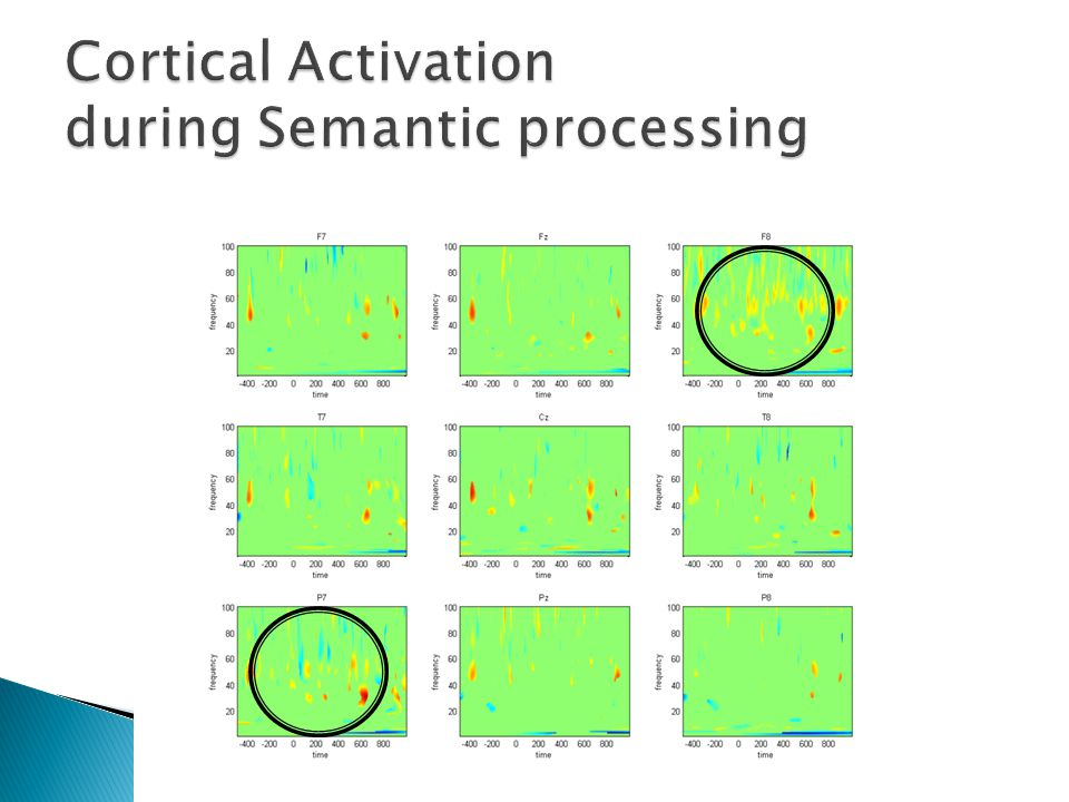 Cortical Activation during Semantic processing