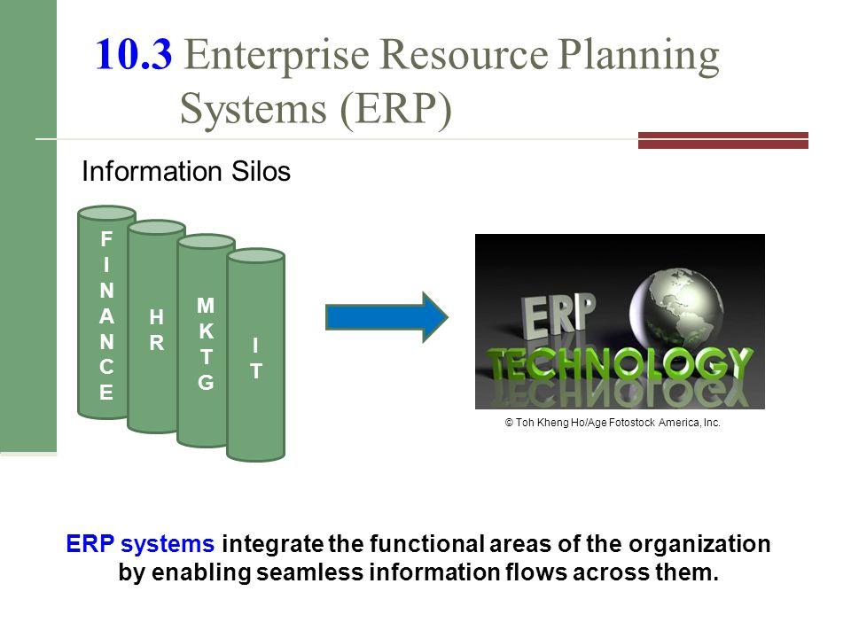10.3 Enterprise Resource Planning Systems (ERP)