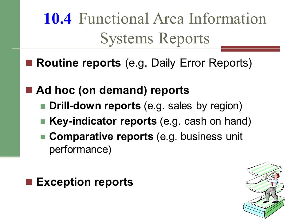 10.4 Functional Area Information Systems Reports