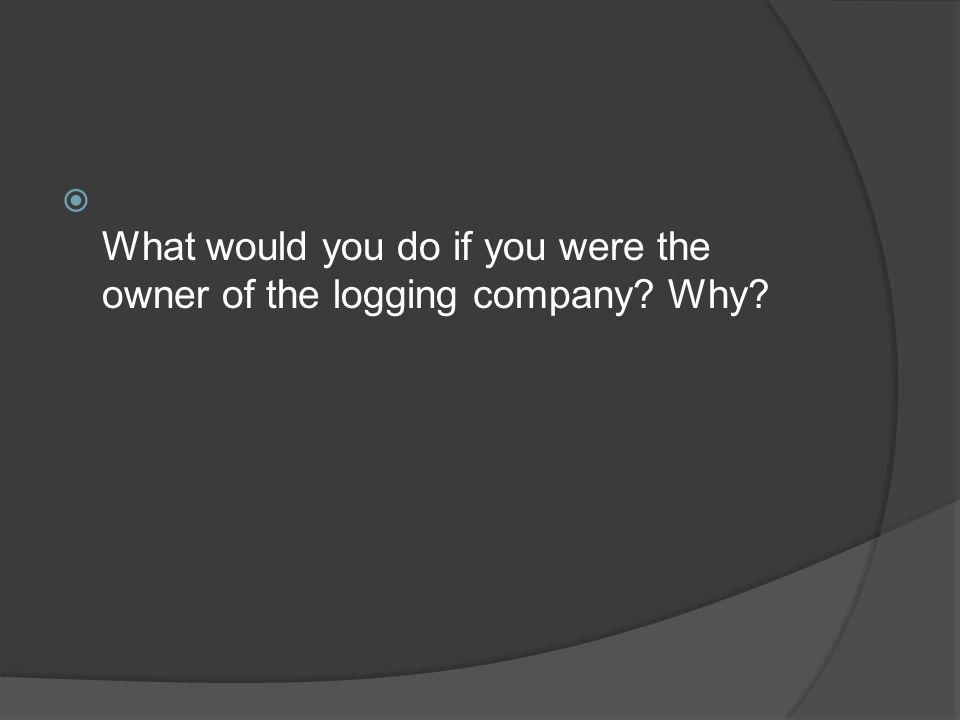 What would you do if you were the owner of the logging company Why