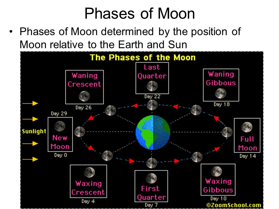 Phases of Moon Phases of Moon determined by the position of Moon relative to the Earth and Sun