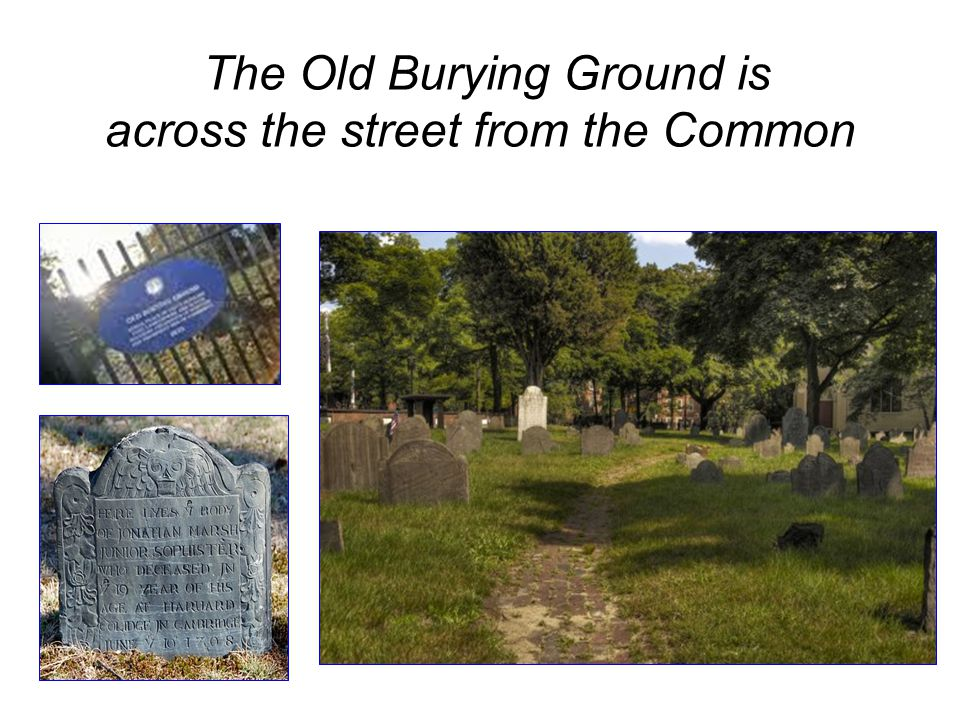 The Old Burying Ground is across the street from the Common