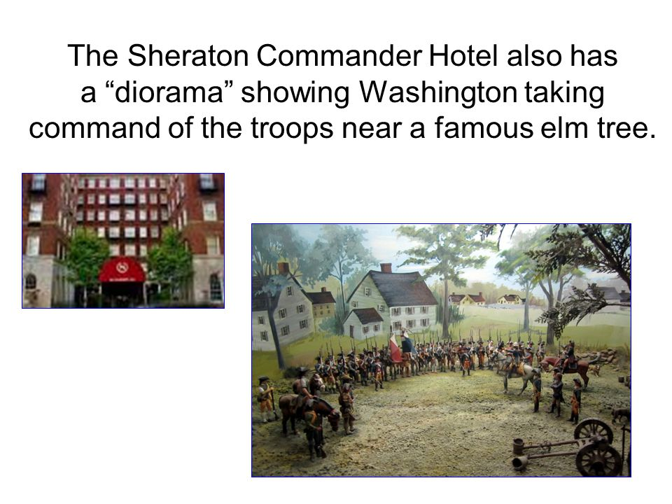The Sheraton Commander Hotel also has a diorama showing Washington taking command of the troops near a famous elm tree.