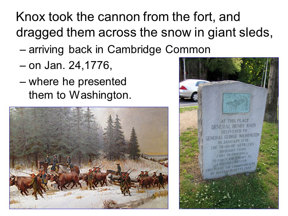 Knox took the cannon from the fort, and dragged them across the snow in giant sleds,