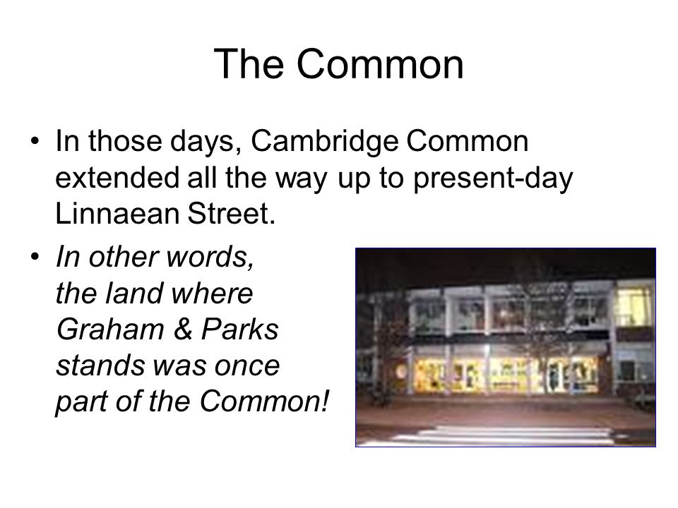 The Common In those days, Cambridge Common extended all the way up to present-day Linnaean Street.