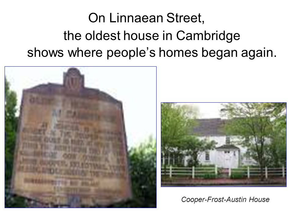 On Linnaean Street, the oldest house in Cambridge shows where people's homes began again.