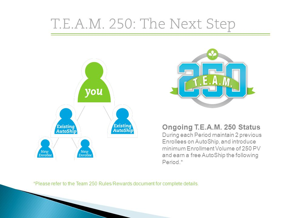 Ongoing T.E.A.M. 250 Status