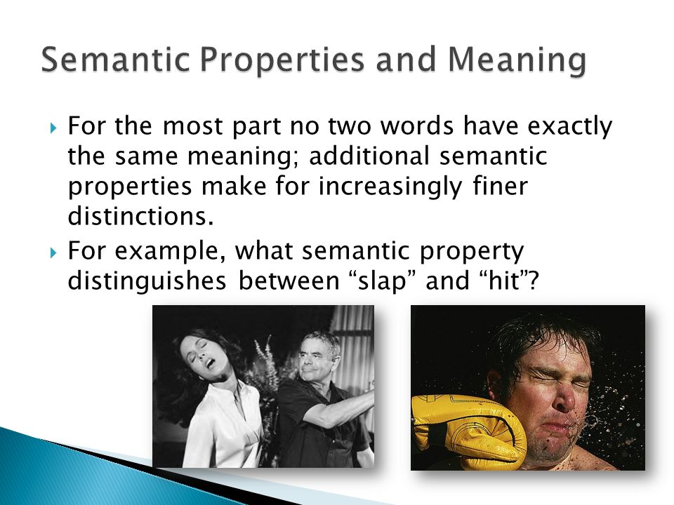 Semantic Properties and Meaning