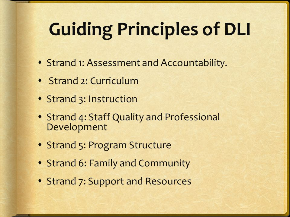 Guiding Principles of DLI