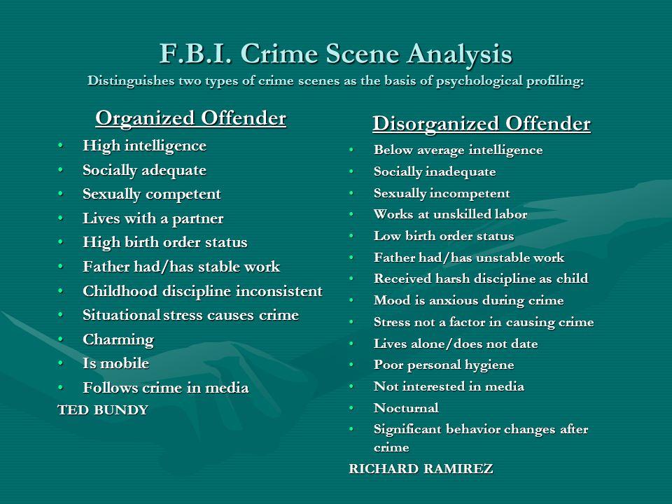 Disorganized Offender