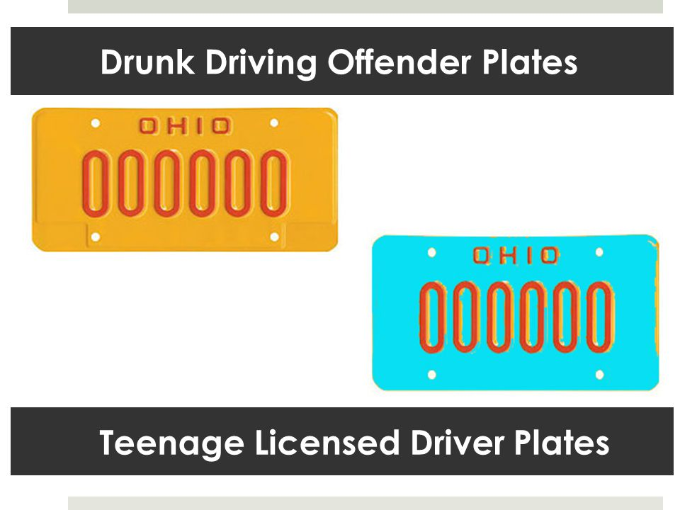 Teenage Licensed Driver Plates